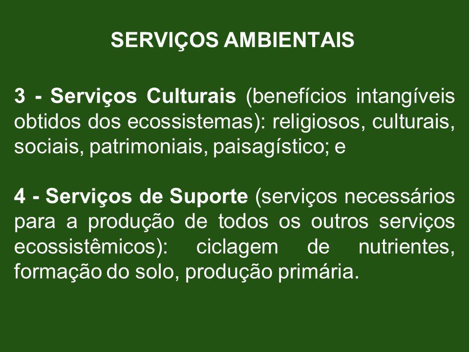 SERVIÇOS AMBIENTAIS 3 - Serviços Culturais (benefícios intangíveis obtidos dos ecossistemas): religiosos, culturais, sociais, patrimoniais, paisagísti