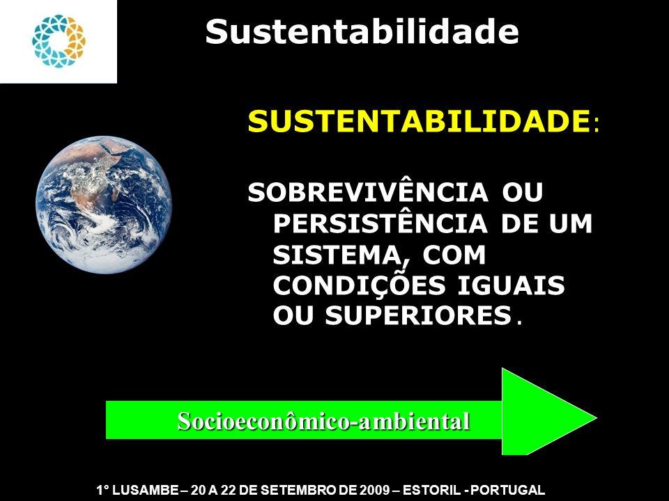 II FEAmbienta – FEA – USP- 03 a 05 DE NOVEMBRO DE 2008 Desenvolvimento Sustentável Sustentabilidade Fraca Sustentabilidade Forte Economia Ambiental Economia Ecológica Sustentabilidade 1° LUSAMBE – 20 A 22 DE SETEMBRO DE 2009 – ESTORIL - PORTUGAL Capital Natural