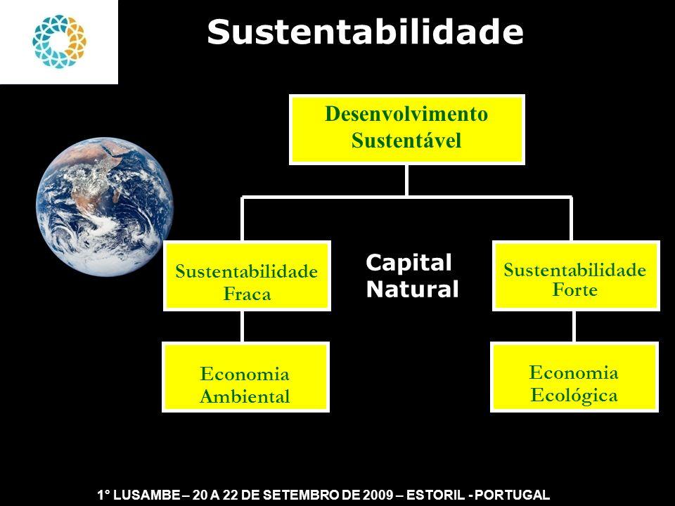 II FEAmbienta – FEA – USP- 03 a 05 DE NOVEMBRO DE 2008 No entendimento da Sustentabilidade Fraca, o capital natural pode ser substituído pelo capital produzido.