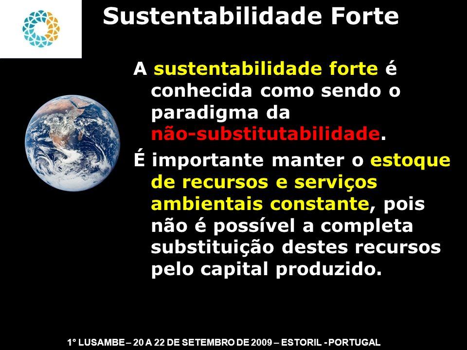 II FEAmbienta – FEA – USP- 03 a 05 DE NOVEMBRO DE 2008 O que é o Capital Natural: - Estoques de energia e materiais de baixa entropia.