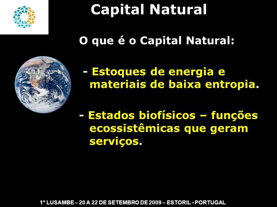 II FEAmbienta – FEA – USP- 03 a 05 DE NOVEMBRO DE 2008 Formas do Capital Natural: - Kne = estoque de insumos fornecidos pela natureza – renováveis ou não renováveis.