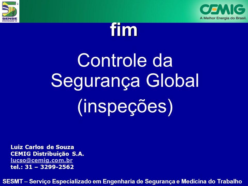 SESMT – Serviço Especializado em Engenharia de Segurança e Medicina do Trabalho Luiz Carlos de Souza CEMIG Distribuição S.A.