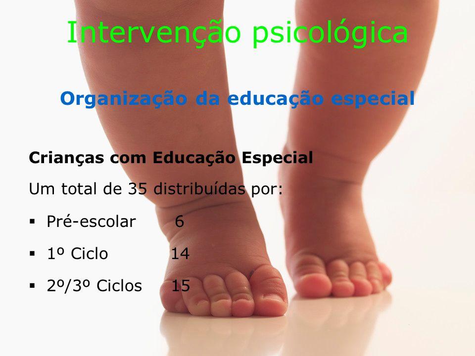 Intervenção psicológica Organização da educação especial Crianças com Educação Especial Um total de 35 distribuídas por: Pré-escolar 6 1º Ciclo 14 2º/3º Ciclos 15