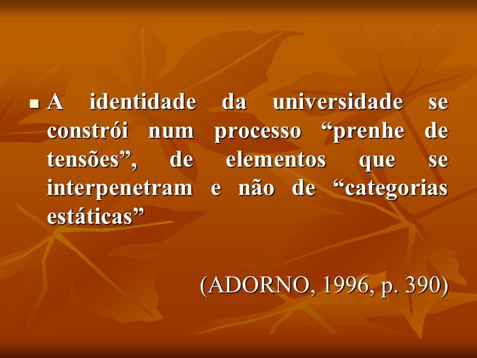 A identidade da universidade se constrói num processo prenhe de tensões, de elementos que se interpenetram e não de categorias estáticas A identidade da universidade se constrói num processo prenhe de tensões, de elementos que se interpenetram e não de categorias estáticas (ADORNO, 1996, p.