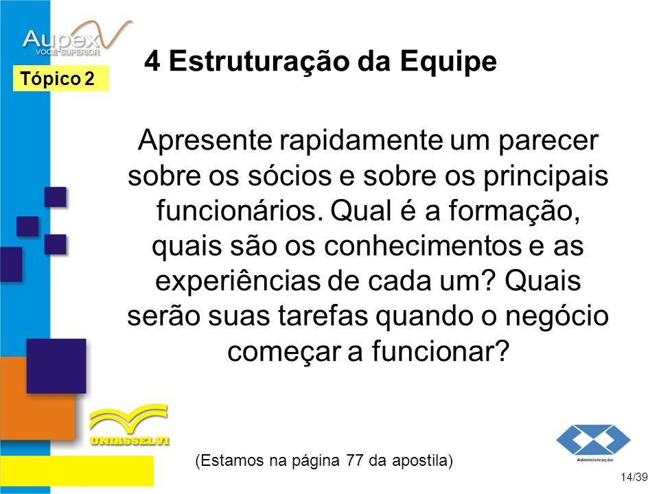 4 Estruturação da Equipe Apresente rapidamente um parecer sobre os sócios e sobre os principais funcionários. Qual é a formação, quais são os conhecim