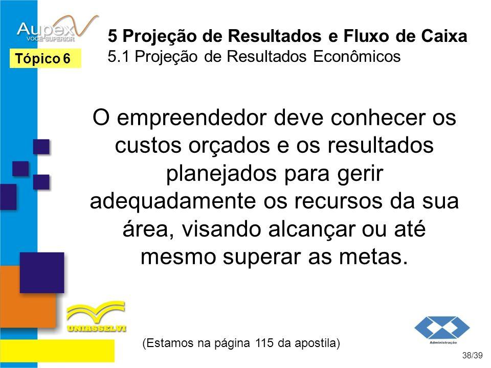 5 Projeção de Resultados e Fluxo de Caixa 5.1 Projeção de Resultados Econômicos O empreendedor deve conhecer os custos orçados e os resultados planeja
