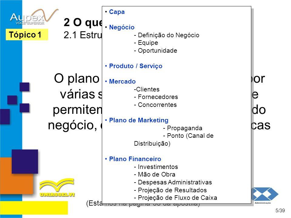 2 O que é um Plano de Negócios 2.1 Estrutura de Um Plano de Negócios O plano de negócios é composto por várias seções que se relacionam e permitem um