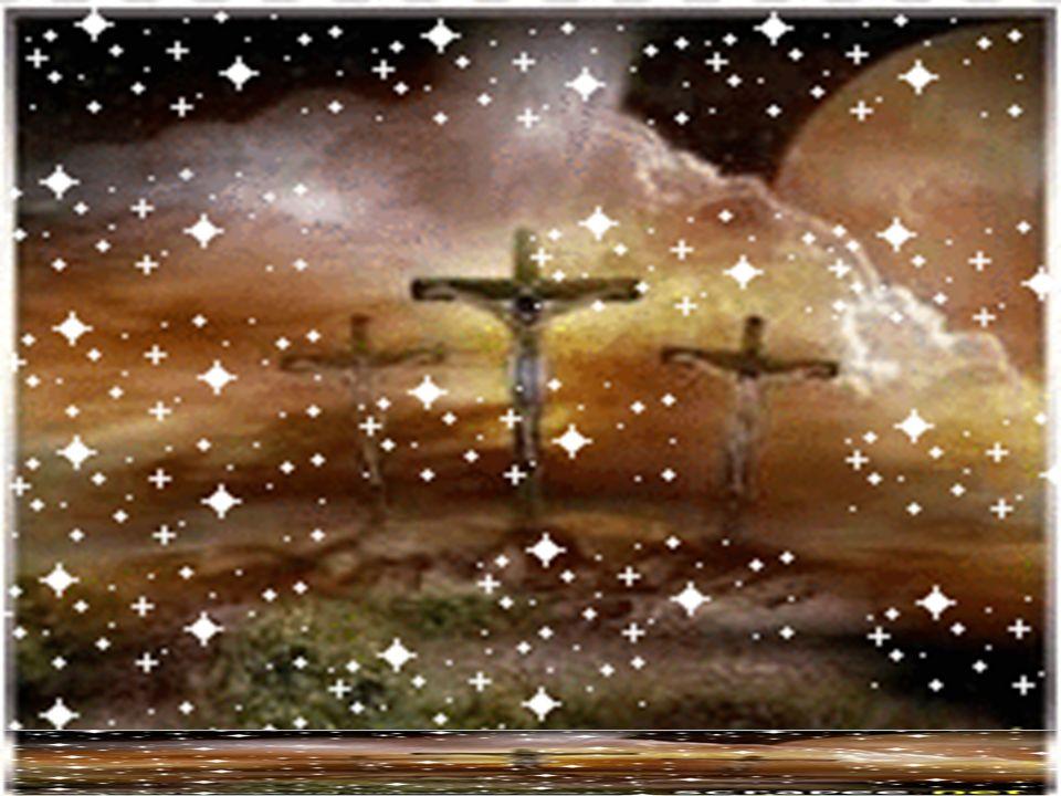 O Evangelho convida-nos a contemplar a paixão e morte de Jesus: é o momento supremo de uma vida feita dom e serviço, a fim de libertar os homens de tu