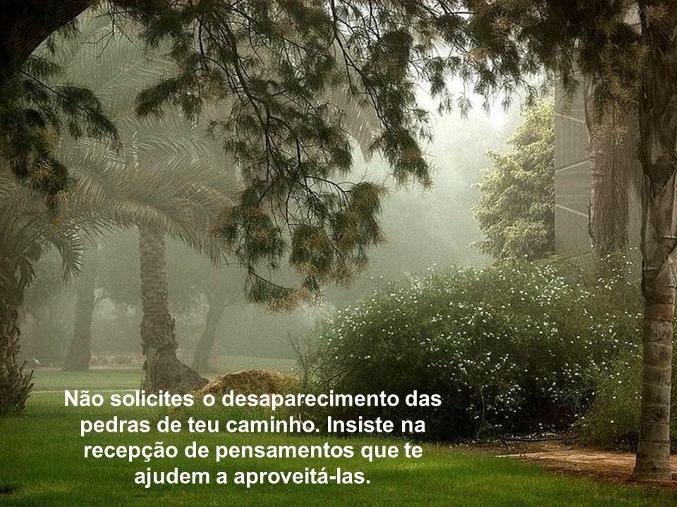 Admiremos a beleza da natureza, na paisagem interrogativa das brumas, e meditemos sobre os textos, ao som da beleza da arte musical de Richard Clayder