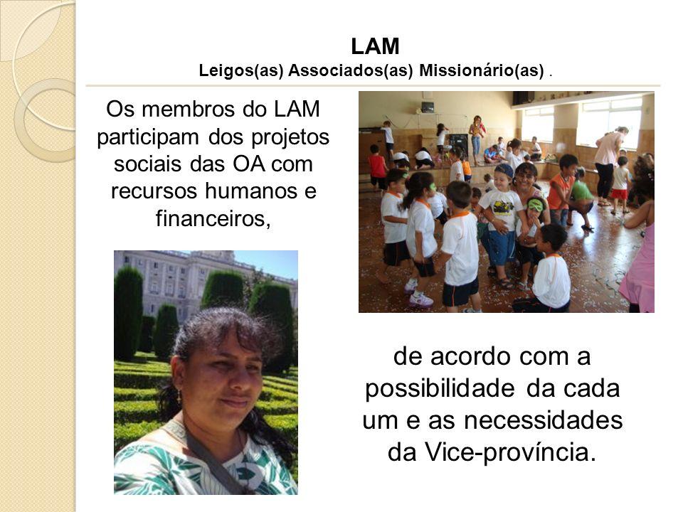 LAM Leigos(as) Associados(as) Missionário(as). de acordo com a possibilidade da cada um e as necessidades da Vice-província. Os membros do LAM partici