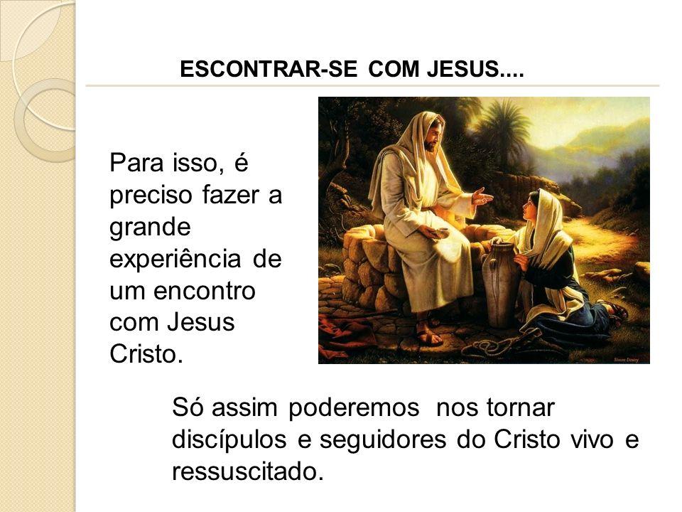 Para isso, é preciso fazer a grande experiência de um encontro com Jesus Cristo. Só assim poderemos nos tornar discípulos e seguidores do Cristo vivo