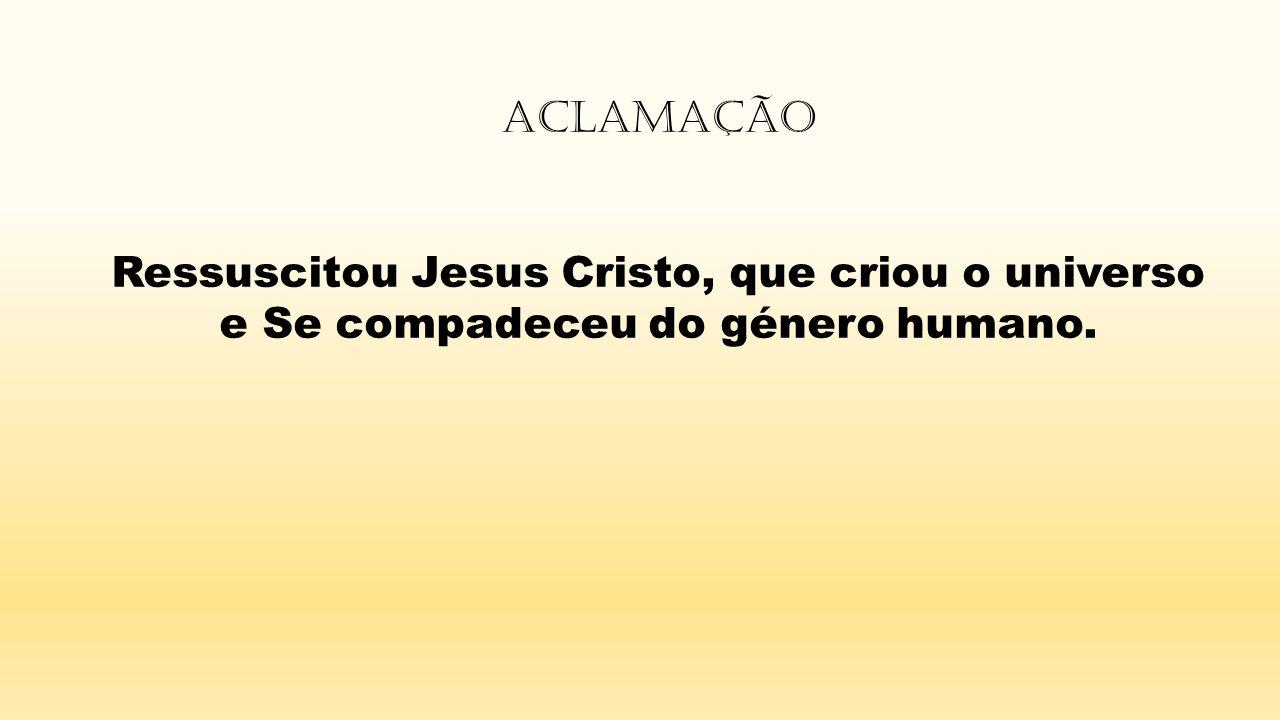 Aclamação Ressuscitou Jesus Cristo, que criou o universo e Se compadeceu do género humano.