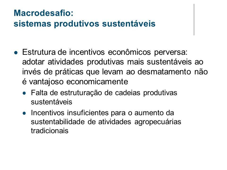Macrodesafio: sistemas produtivos sustentáveis Estrutura de incentivos econômicos perversa: adotar atividades produtivas mais sustentáveis ao invés de