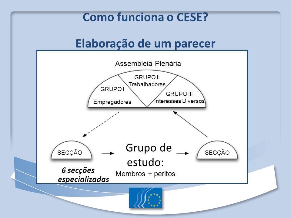 Como funciona o CESE? Elaboração de um parecer 6 secções especializadas Assembleia Plenária GRUPO II Trabalhadores GRUPO I Empregadores GRUPO III Inte