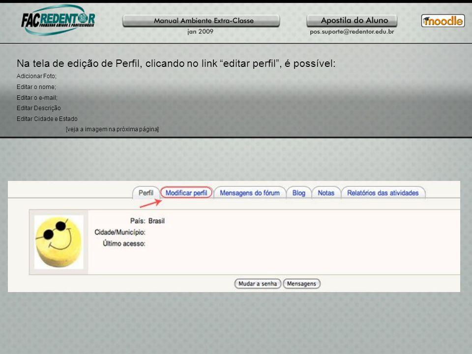 Na tela de edição de Perfil, clicando no link editar perfil, é possível: Adicionar Foto; Editar o nome; Editar o e-mail; Editar Descrição Editar Cidad
