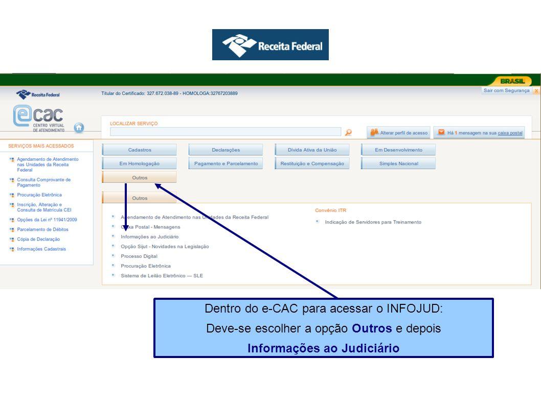 Ao selecionar a opção Visualizar Solicitação na tela de consultas pode-se ver o detalhe do que foi requisitado.