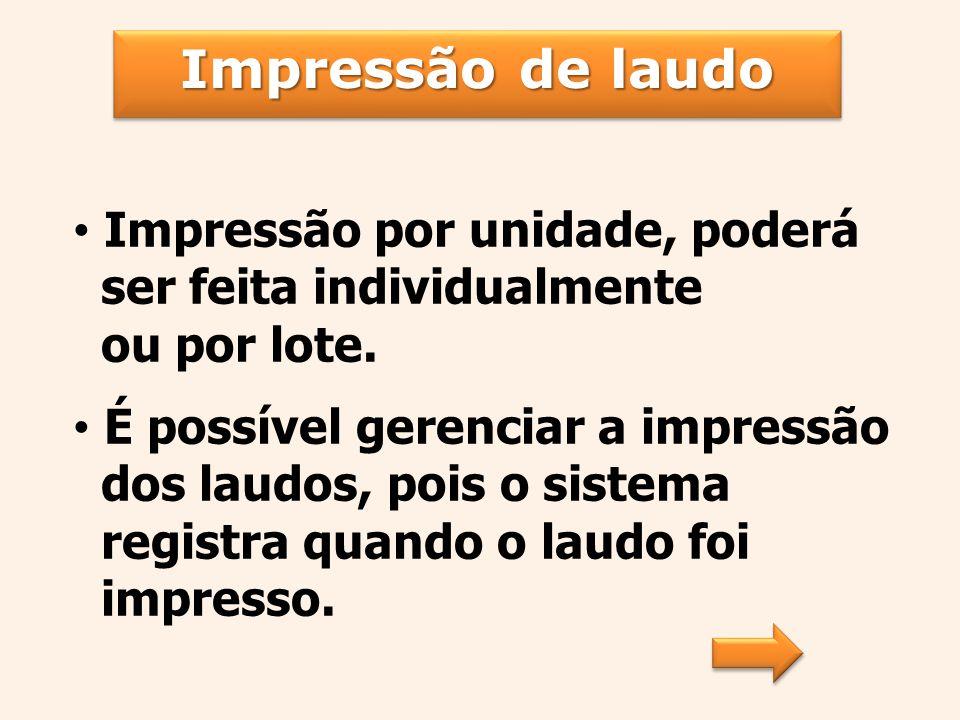 Impressão por unidade, poderá ser feita individualmente ou por lote.