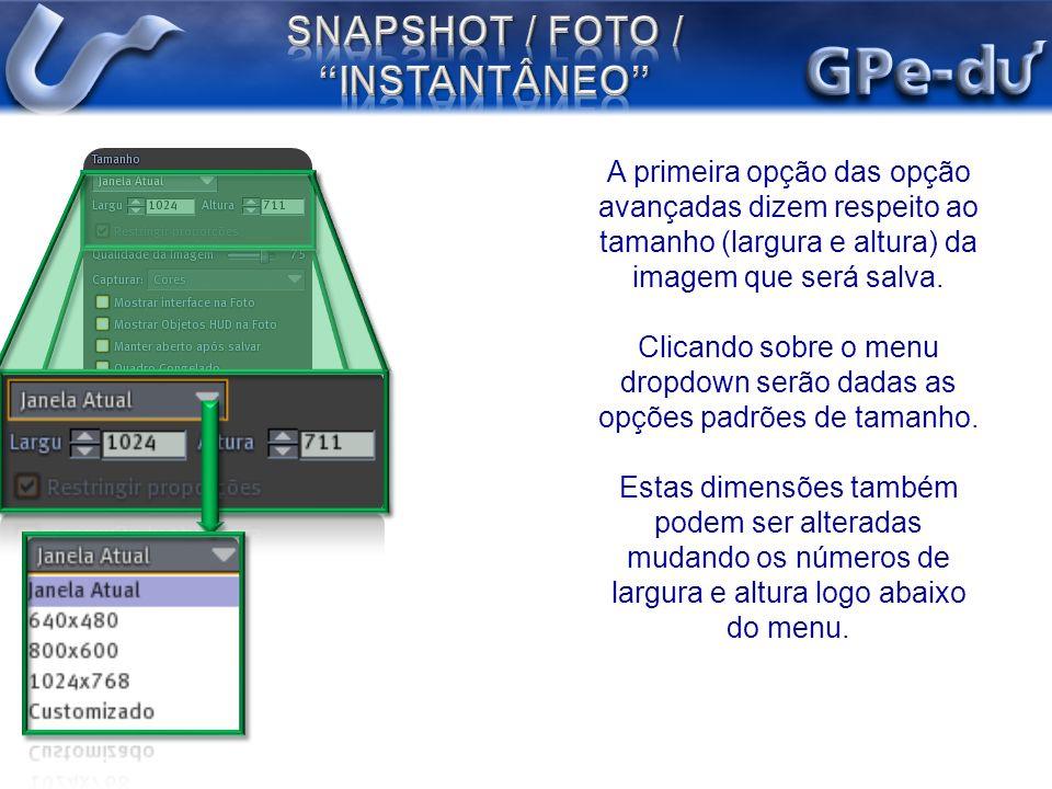 A primeira opção das opção avançadas dizem respeito ao tamanho (largura e altura) da imagem que será salva. Clicando sobre o menu dropdown serão dadas