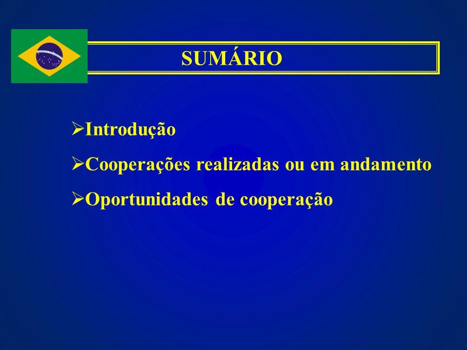 SUMÁRIO Introdução Cooperações realizadas ou em andamento Oportunidades de cooperação