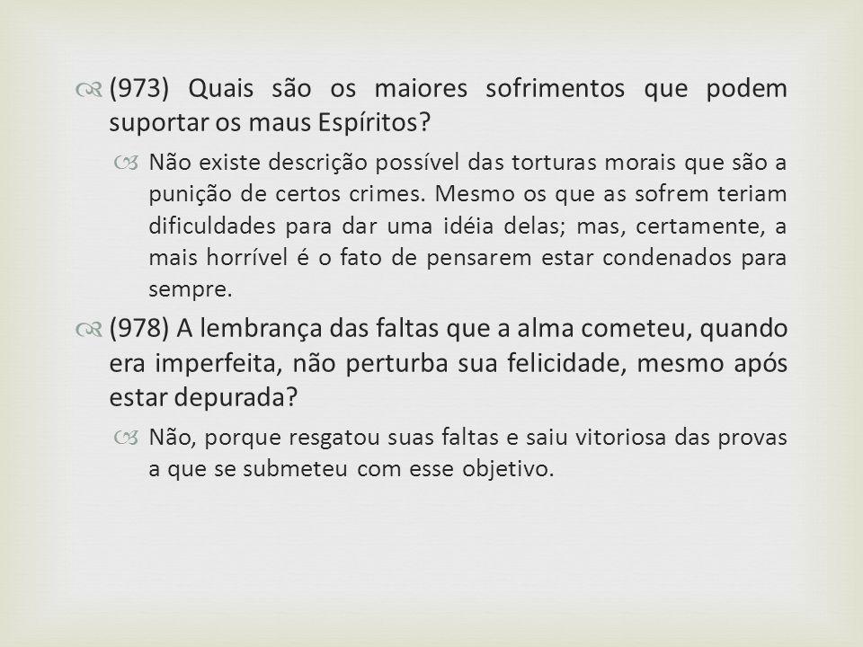 (973) Quais são os maiores sofrimentos que podem suportar os maus Espíritos? Não existe descrição possível das torturas morais que são a punição de ce