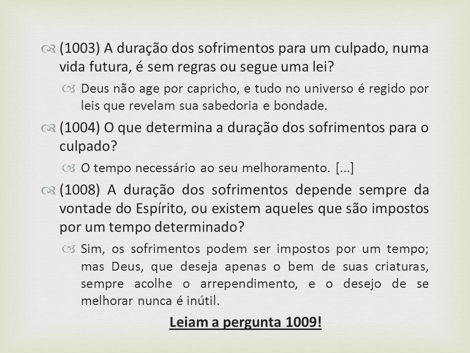 (1003) A duração dos sofrimentos para um culpado, numa vida futura, é sem regras ou segue uma lei? Deus não age por capricho, e tudo no universo é reg