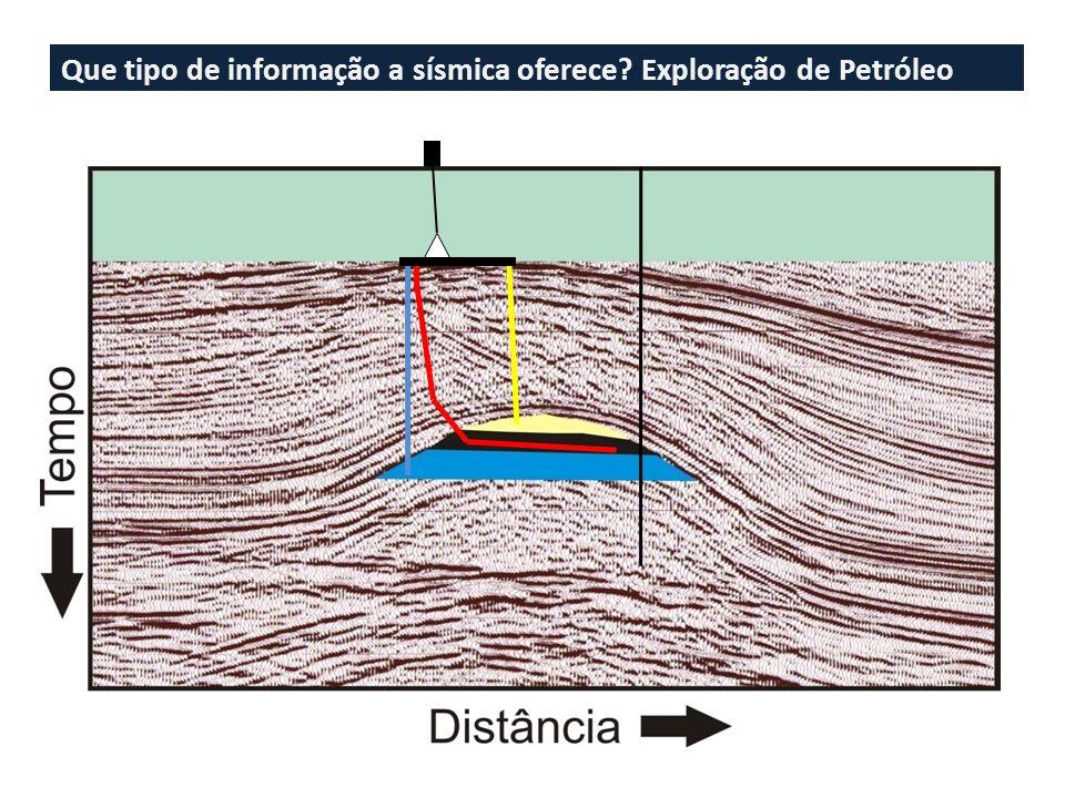 Onda S O movimento de partícula é transversal a direção de propagação da onda, e pode ser polarizado tanto na vertical como na horizontal.