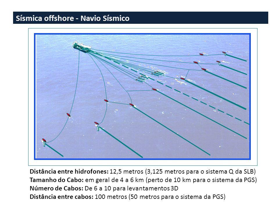 Sísmica offshore - Cabo Sísmico Essa característica permite que o levantamento sísmico marinho seja realizado com o navio em movimento, por outro lado exige que os cabos sísmicos estejam constantemente submersos, em geral a profundidades que variam entre 5 e 8 metros, e que são controladas com os birds.