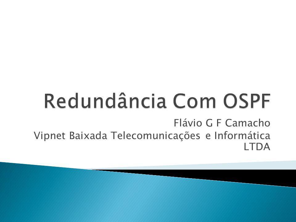 Flávio G F Camacho Vipnet Baixada Telecomunicações e Informática LTDA