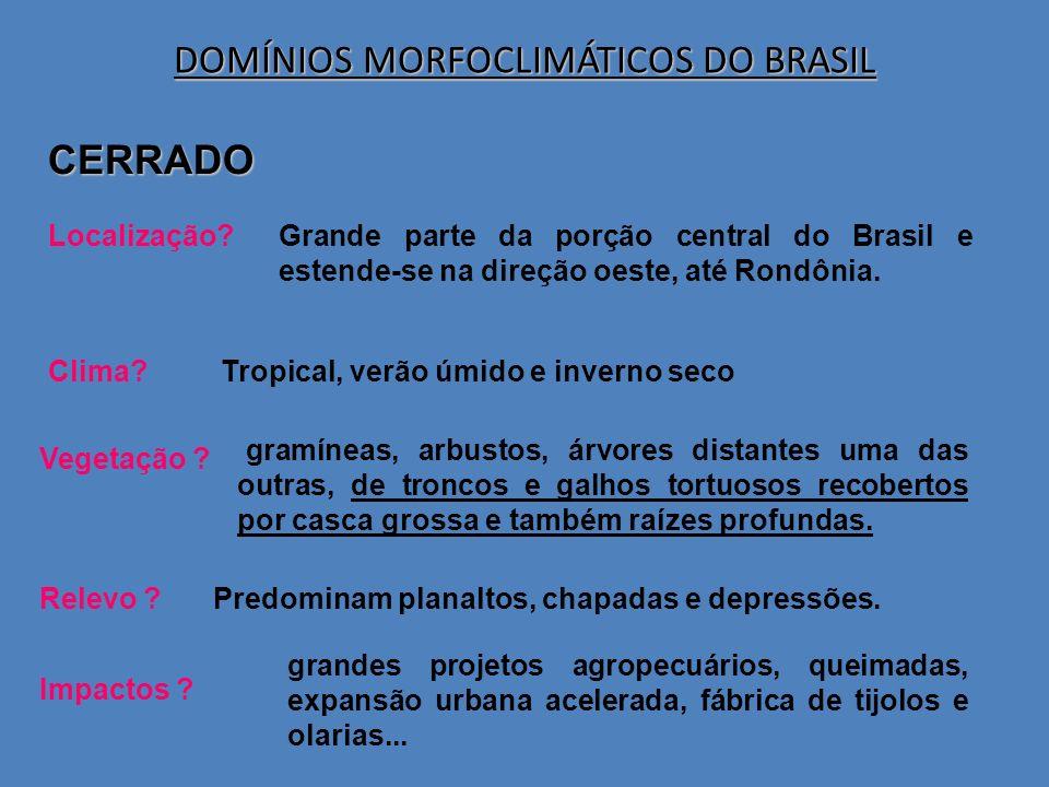 CERRADO Localização?Grande parte da porção central do Brasil e estende-se na direção oeste, até Rondônia. Clima?Tropical, verão úmido e inverno seco V