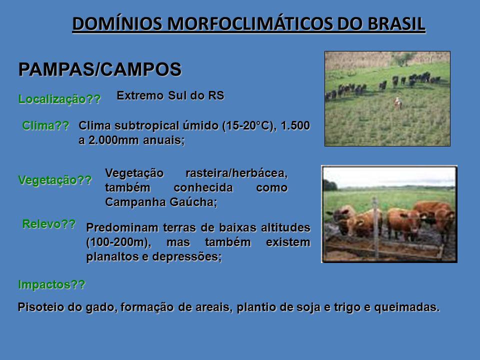 PAMPAS/CAMPOS DOMÍNIOS MORFOCLIMÁTICOS DO BRASIL Localização?? Predominam terras de baixas altitudes (100-200m), mas também existem planaltos e depres