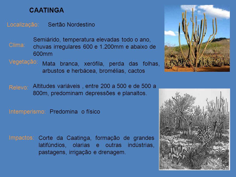 CAATINGA Localização: Clima: Vegetação: Relevo: Intemperismo: Impactos: Sertão Nordestino Predomina o físico Mata branca, xerófila, perda das folhas,