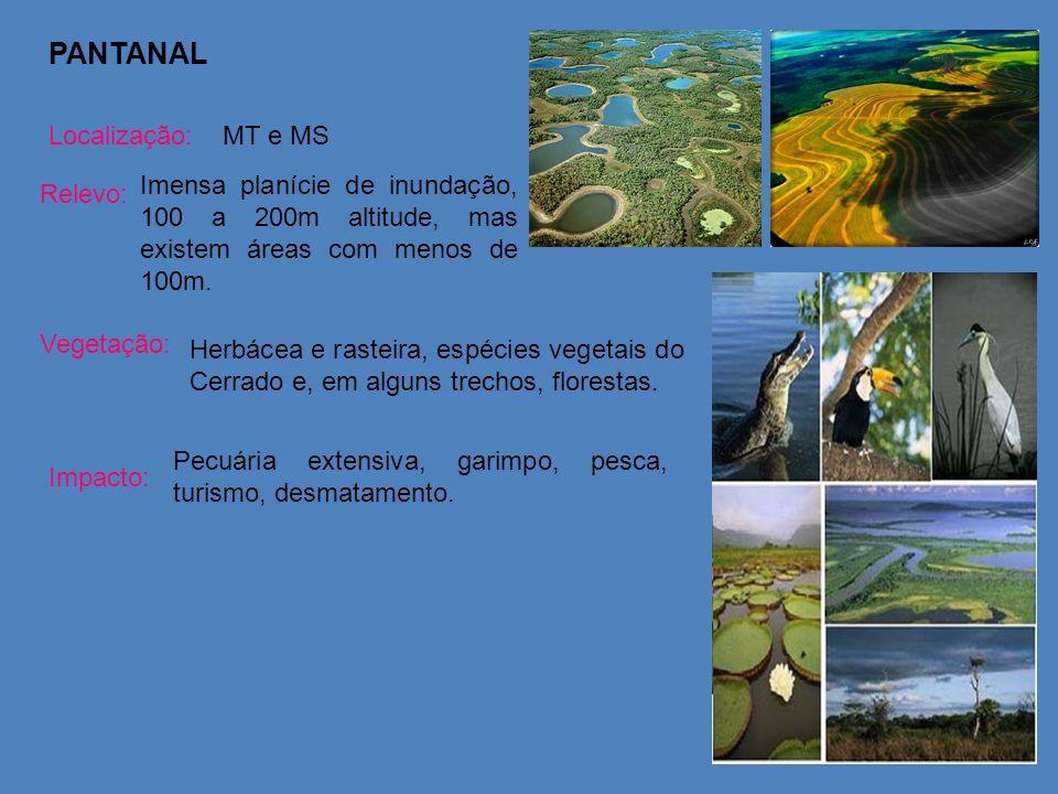 PANTANAL Localização:MT e MS Relevo: Imensa planície de inundação, 100 a 200m altitude, mas existem áreas com menos de 100m. Vegetação: Herbácea e ras