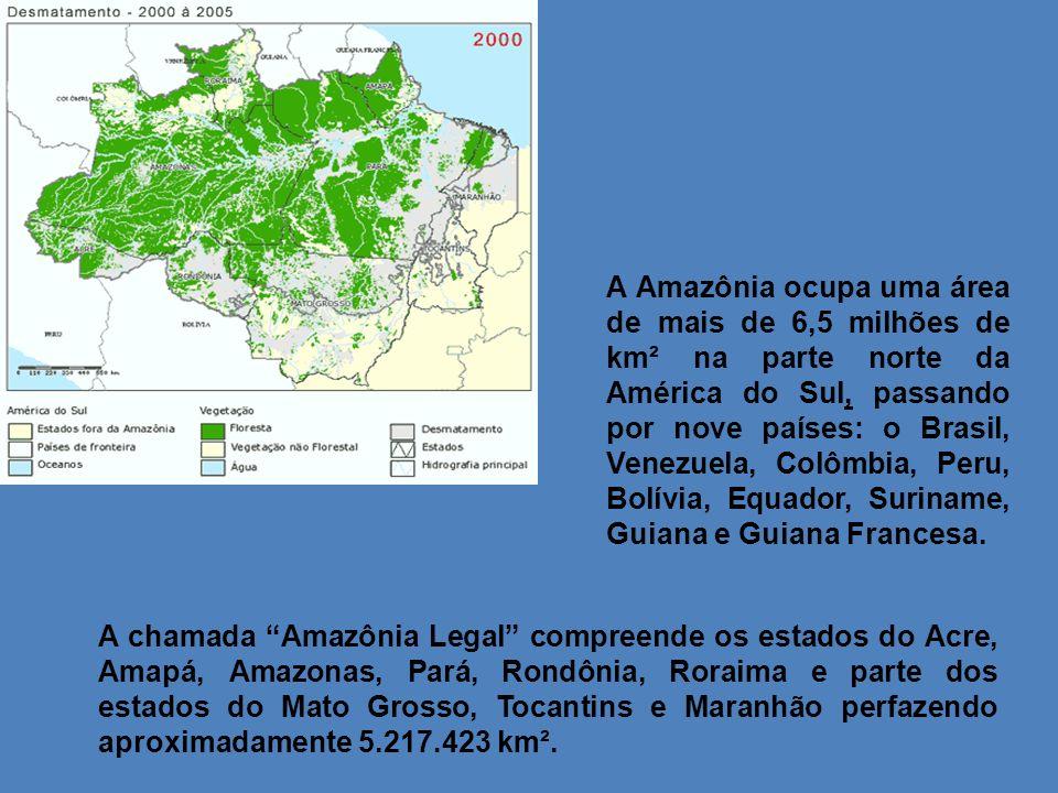 A chamada Amazônia Legal compreende os estados do Acre, Amapá, Amazonas, Pará, Rondônia, Roraima e parte dos estados do Mato Grosso, Tocantins e Maran