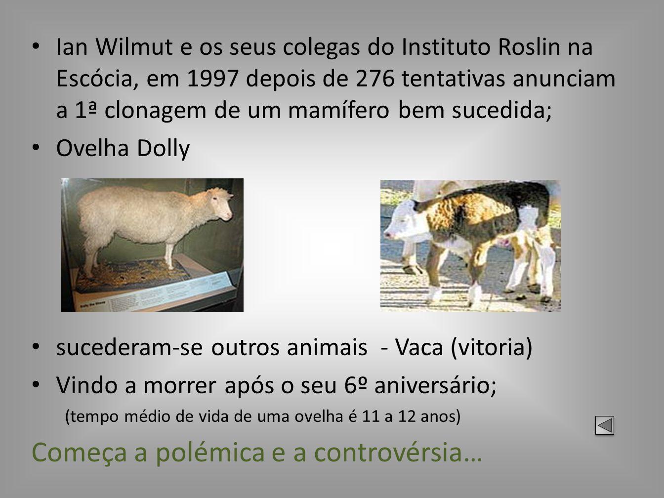Ian Wilmut e os seus colegas do Instituto Roslin na Escócia, em 1997 depois de 276 tentativas anunciam a 1ª clonagem de um mamífero bem sucedida; Ovel