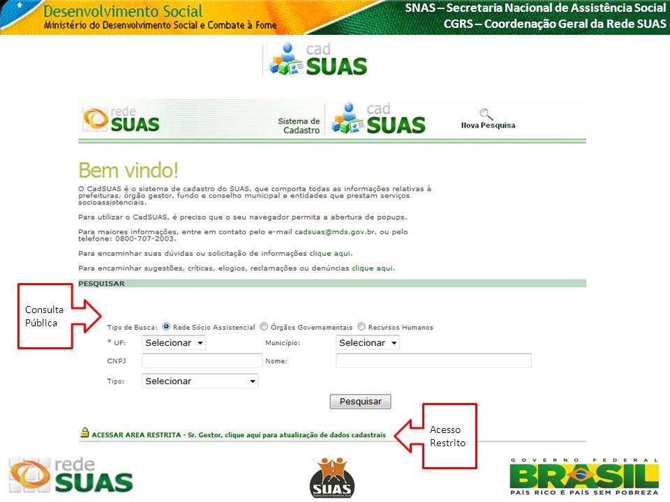 SNAS – Secretaria Nacional de Assistência Social CGRS – Coordenação Geral da Rede SUAS Acesso Restrito Consulta Pública
