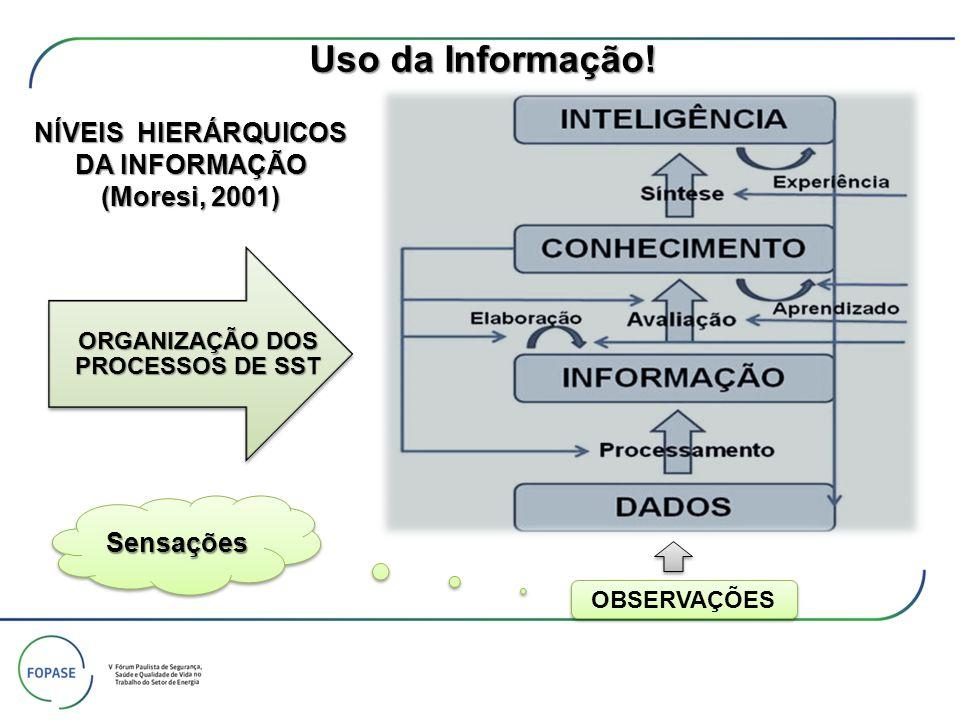 NÍVEIS HIERÁRQUICOS DA INFORMAÇÃO (Moresi, 2001) ORGANIZAÇÃO DOS PROCESSOS DE SST SensaçõesSensações OBSERVAÇÕES Uso da Informação!