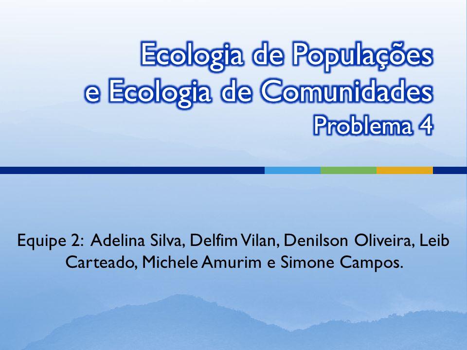 Equipe 2: Adelina Silva, Delfim Vilan, Denilson Oliveira, Leib Carteado, Michele Amurim e Simone Campos.
