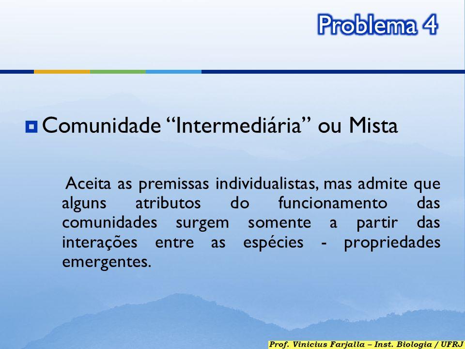 Comunidade Intermediária ou Mista Aceita as premissas individualistas, mas admite que alguns atributos do funcionamento das comunidades surgem somente