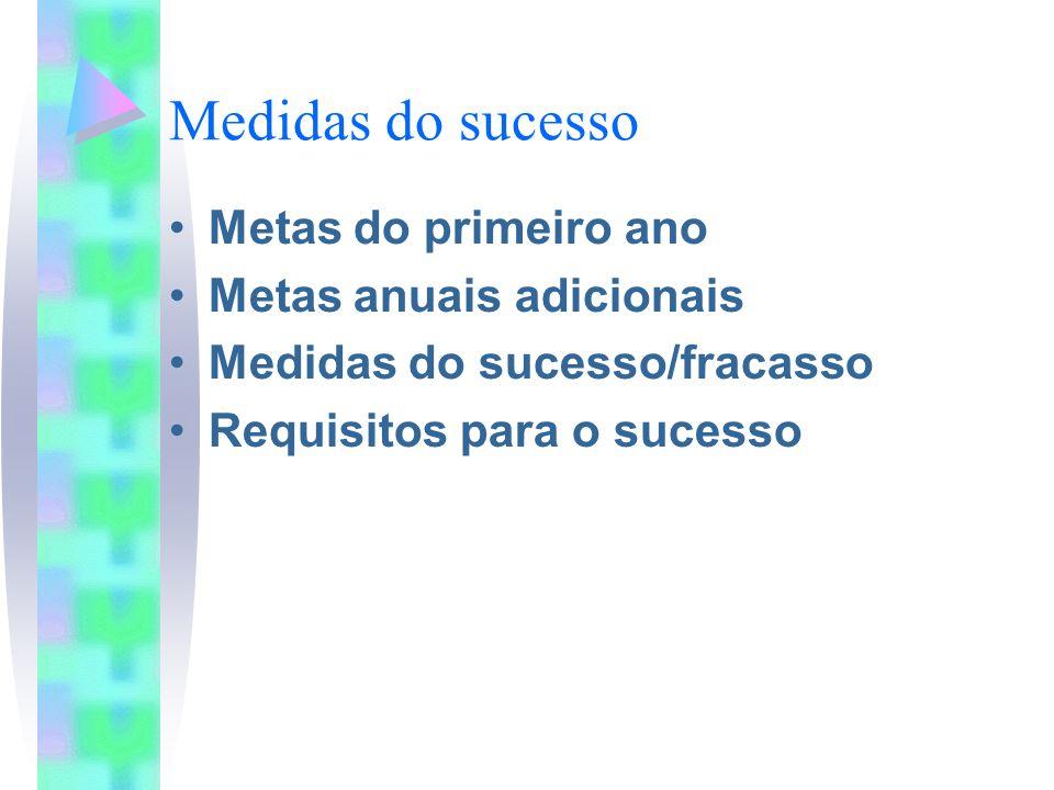 Medidas do sucesso Metas do primeiro ano Metas anuais adicionais Medidas do sucesso/fracasso Requisitos para o sucesso
