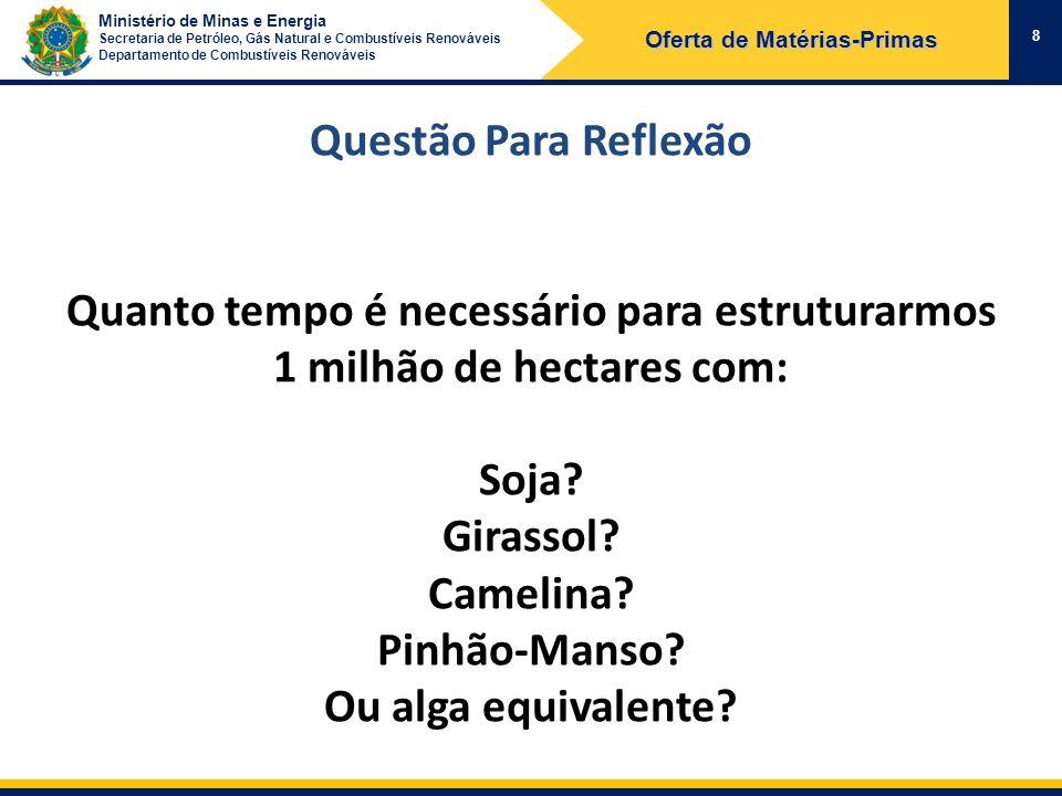 Ministério de Minas e Energia Secretaria de Petróleo, Gás Natural e Combustíveis Renováveis Departamento de Combustíveis Renováveis 8 Oferta de Matéri