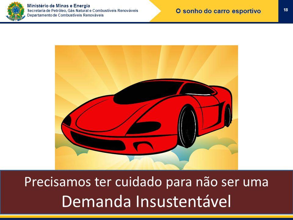 Ministério de Minas e Energia Secretaria de Petróleo, Gás Natural e Combustíveis Renováveis Departamento de Combustíveis Renováveis 18 O sonho do carr