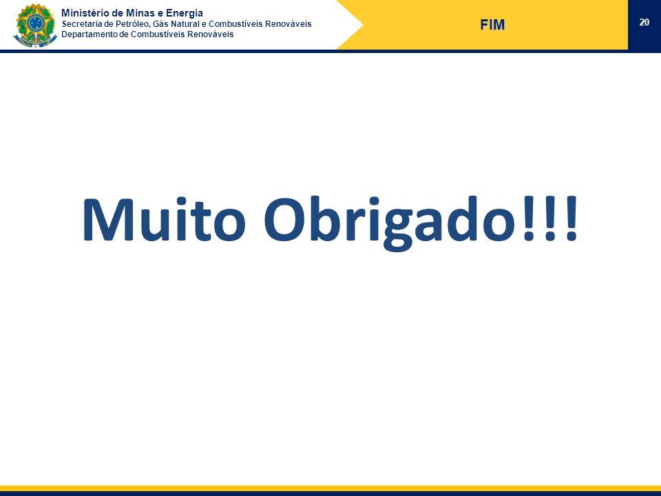 Ministério de Minas e Energia Secretaria de Petróleo, Gás Natural e Combustíveis Renováveis Departamento de Combustíveis Renováveis 20 FIM Muito Obrig