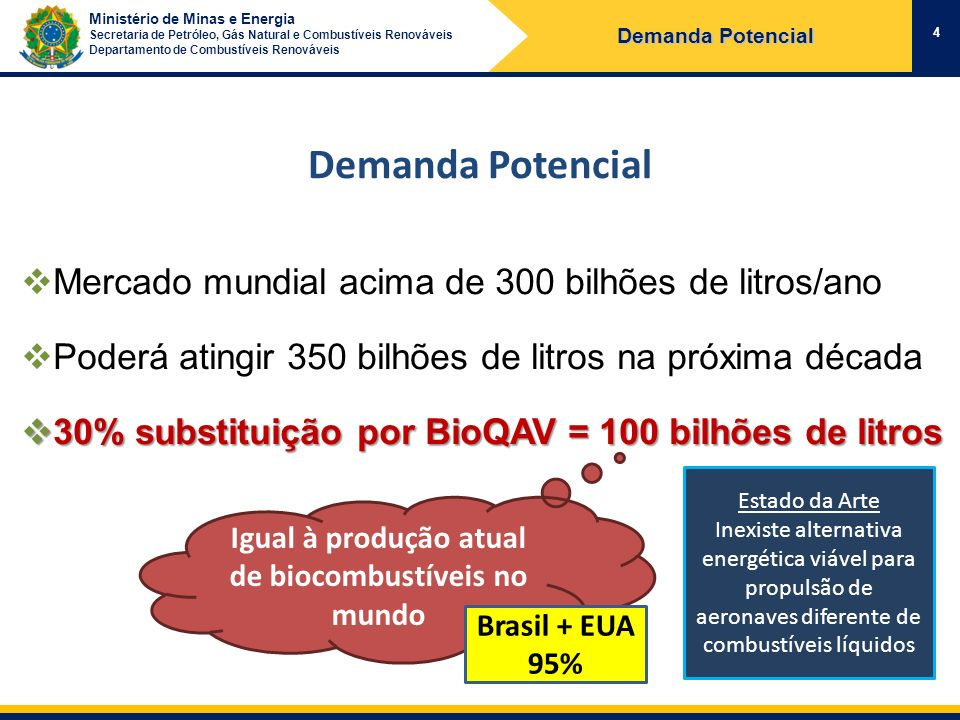 Ministério de Minas e Energia Secretaria de Petróleo, Gás Natural e Combustíveis Renováveis Departamento de Combustíveis Renováveis 12 A visão da Aviação Mundial The aviation industry has made it clear that it is only looking at second-generation biofuels and is determined not to repeat the mistakes made with first-generation sources, expecting any supply to be fully sustainable.