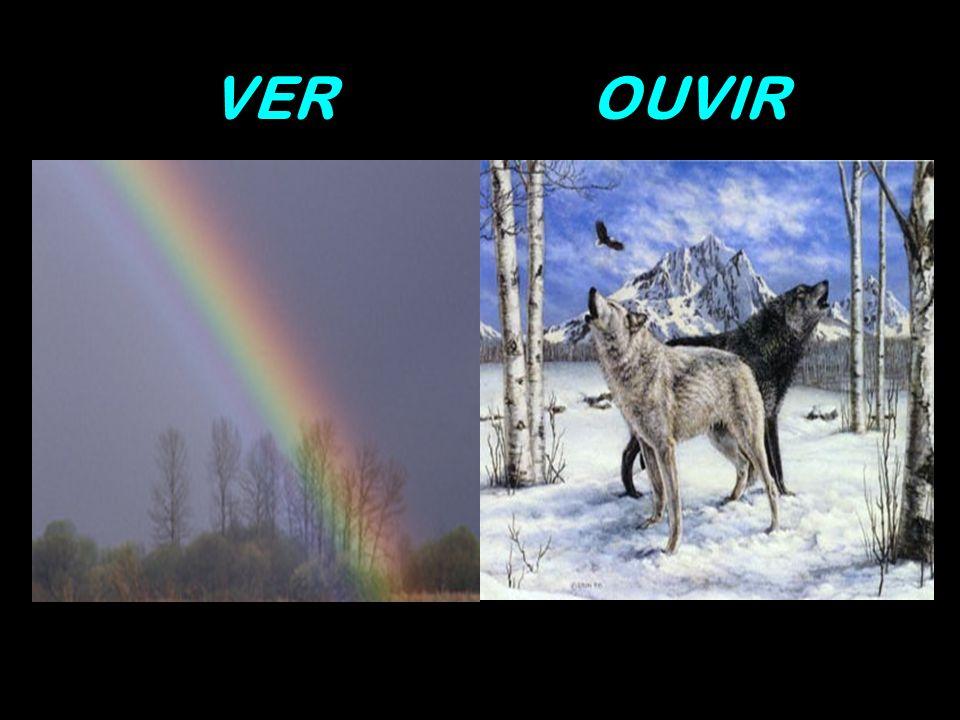 VEROUVIR