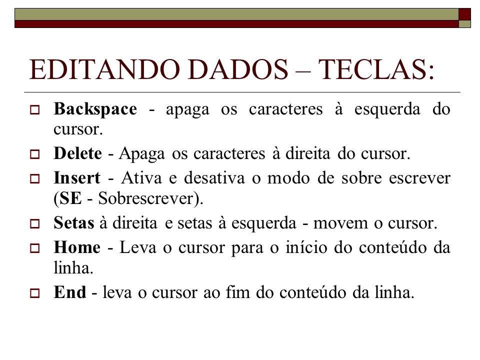EDITANDO DADOS – TECLAS: Backspace - apaga os caracteres à esquerda do cursor. Delete - Apaga os caracteres à direita do cursor. Insert - Ativa e desa