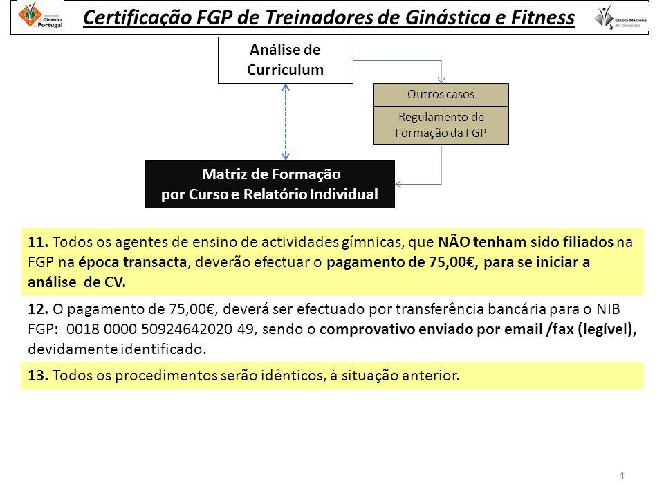 Análise de Curriculum Outros casos Regulamento de Formação da FGP Matriz de Formação por Curso e Relatório Individual 11.