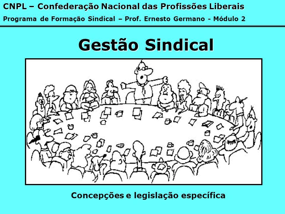 Gestão Sindical Concepções e legislação específica CNPL – Confederação Nacional das Profissões Liberais Programa de Formação Sindical – Prof. Ernesto