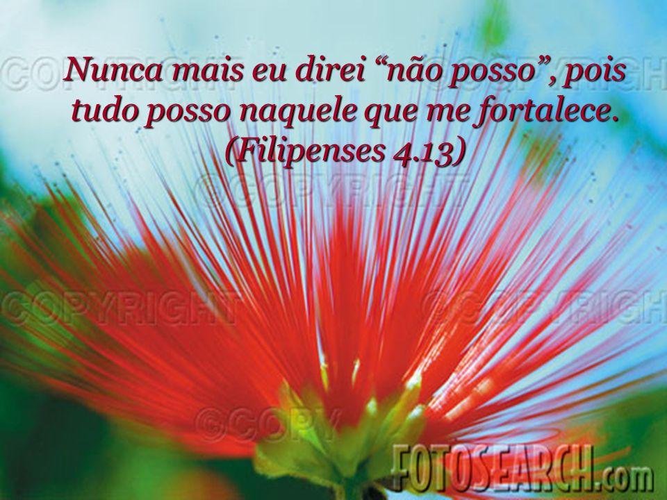 Nunca mais direi que estou preso, pois onde está o Espírito do Senhor aí há liberdade (2 Coríntios 3.17).