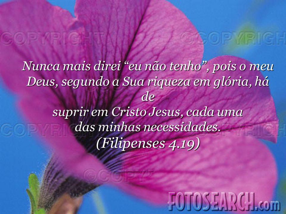 Nunca mais direi eu não tenho, pois o meu Deus, segundo a Sua riqueza em glória, há de suprir em Cristo Jesus, cada uma das minhas necessidades.