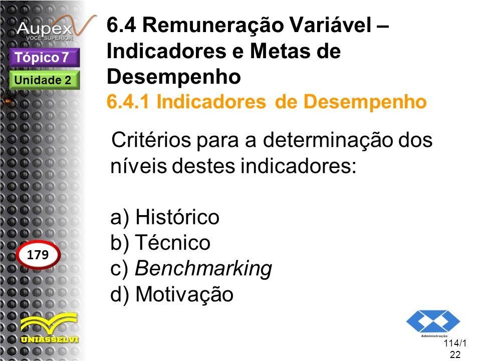 6.4 Remuneração Variável – Indicadores e Metas de Desempenho 6.4.1 Indicadores de Desempenho Critérios para a determinação dos níveis destes indicador